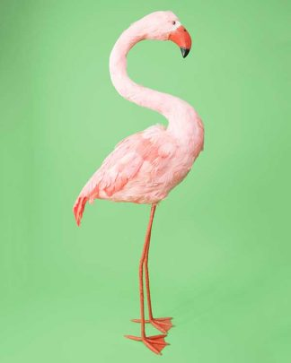 Decorative flamingo
