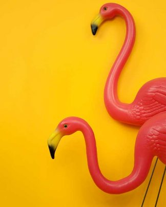 Plastic Garden Flamingos