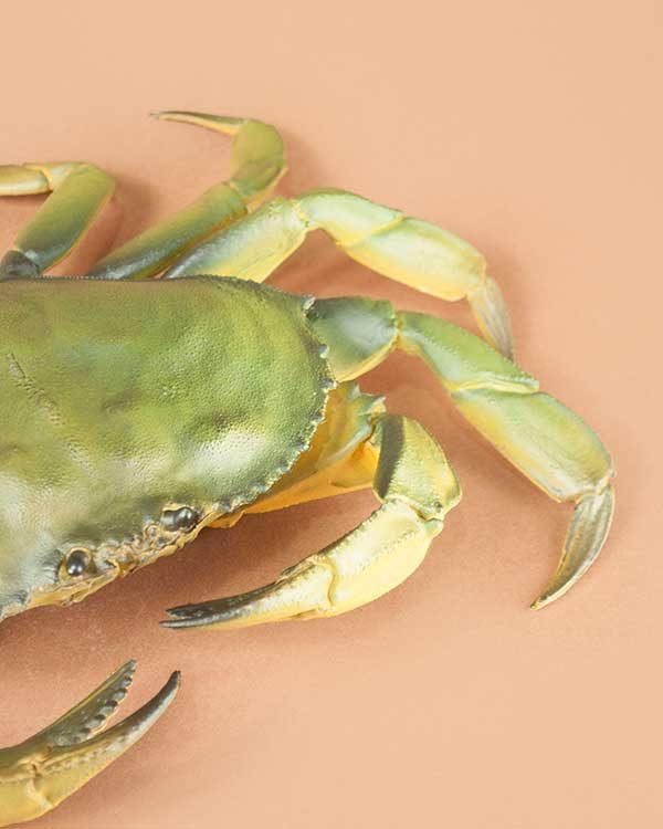 Novelty Plastic Large Crab