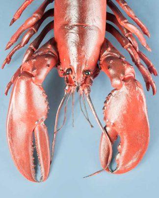 Novelty Plastic Lobster Large