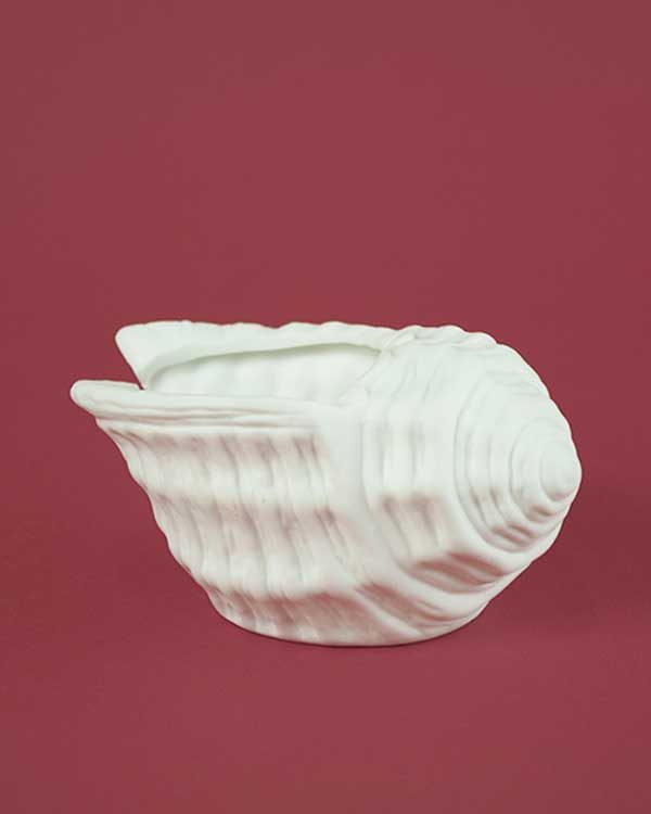 Sea shell tea light holder