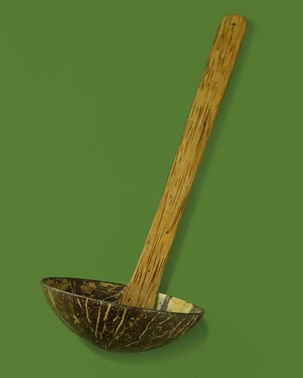 Coconut Ladle