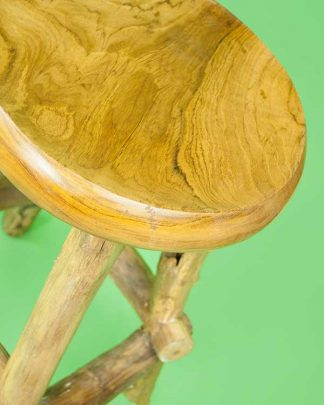 Petrified Wooden Bar Stool