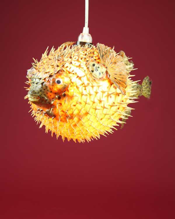 Dried Puffa Fish Pendant Light