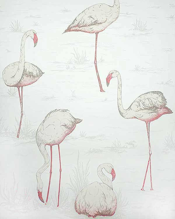 Cole and son flamingo wall paper