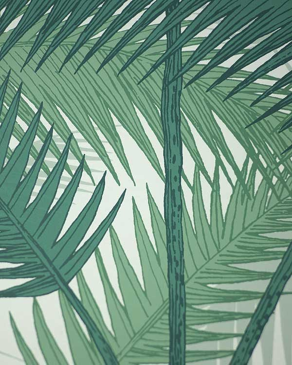 Cole and son palm tropical wall paper