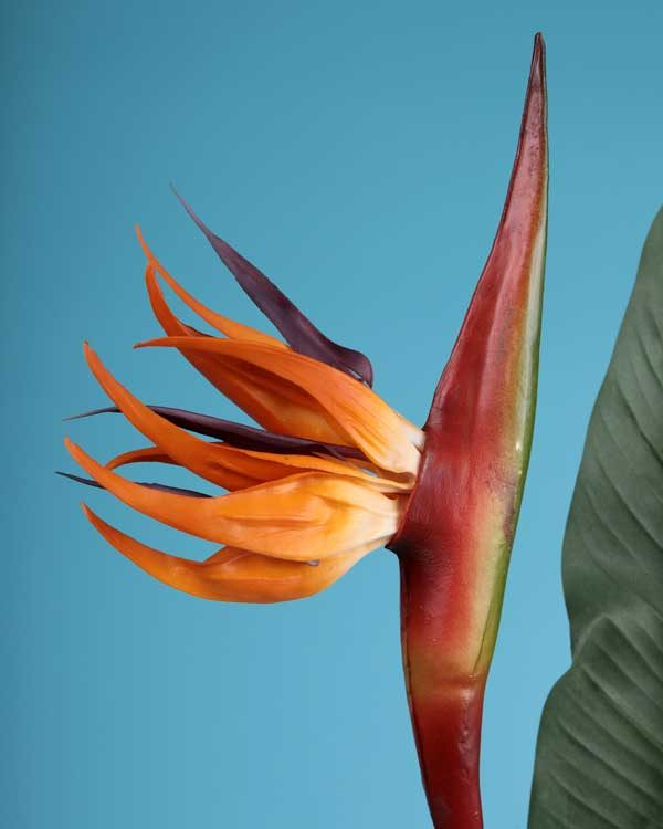 Artificial Bird of paradise stem