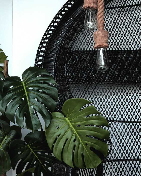 Artificial Monstera Plant with black princess chair and nautical rope pendant
