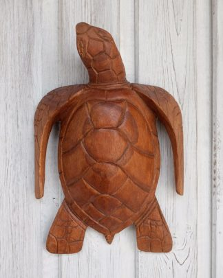 Hand carved wooden turtle shown as a piece of decorative wall art