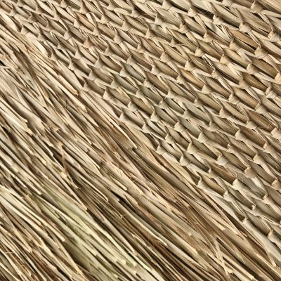 Rain Cape Woven Back Detail and Thatch Front