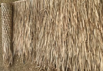 Extra Large Rain Cape Thatch Roofing